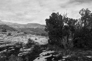 Juniper Tree Vista, Ghost Ranch, Abiquiu, New Mexico