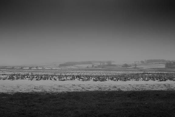 Winter Field, Dell Rapids